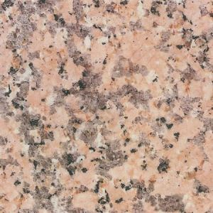 China Pink Porino Granite Countertops