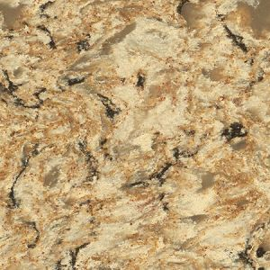 Desert Flower Quartzite Countertops