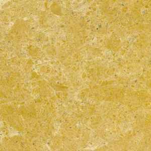 Indus Gold Marble Countertops
