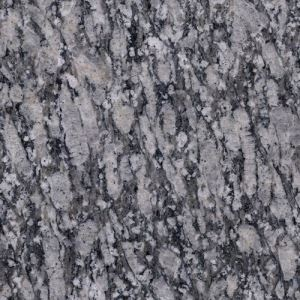 Zijiang White Granite Slab